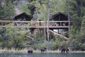 Bear Camp (low res) 2